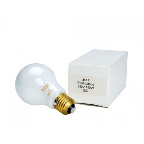 Paterson Enlarger Lamp 230v/75w