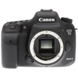 Canon EOS 7D Mark II rent
